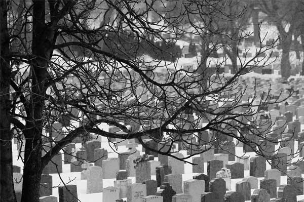 Talofobi – Fobi för att bli levande begravd Fakta & Råd för Talofobi